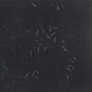 Impronta Black